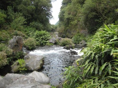 Réunion_78.jpg
