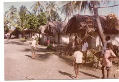 Petite Guinée.jpg