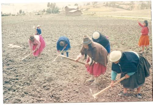 Indiennes au travail.jpg